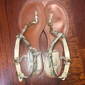 Great shape Chelsea snake print leather thong